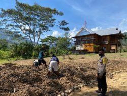 Dalam Rangka Binmas Noken, Bhabinkamtibmas Lakukan Perawatan Lahan Sayuran